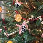 Ароматный цитрусовый декор на ёлке.