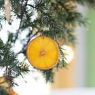 Подсушенные ломтики лимона или апельсина достаточно яркие чтобы стать украшением на ёлке.