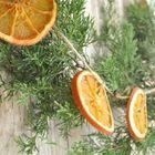Рождественский венок украшенный привязанными к нему ломтиками апельсина.