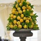 Яркая лимонная горка в виде елочки.