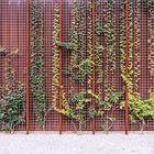 Озелененная стена дома. (фасад,архитектура,дизайн,экстерьер,индустриальный,лофт,винтаж,стиль лофт,индустриальный стиль)