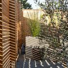 Солнце проходя сквозь ограду играет бликами на дорожках и цветочных вазонах. (1950-70е,середина 20-го века,архитектура,дизайн,экстерьер,интерьер,дизайн интерьера,мебель)