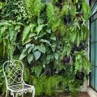 Отлично организованный дворик с вертикальным садом. Вертикальный сад является отличной идеей и для балкона, так как занимает мало места.