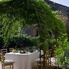 Обеденный стол под аркой с вьющимися растениями.