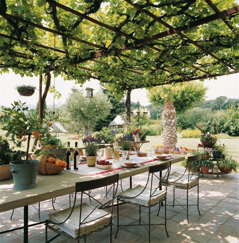 На террасе под виноградом.