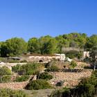 Террасы с оливковыми и другими деревьями. Реконструкция не нарушила гармоничного пейзажа. (архитектура,дизайн,экстерьер,мебель,интерьер,дизайн интерьера,средиземноморский)