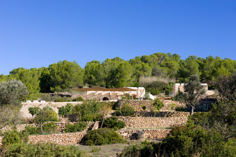 Террасы с оливковыми и другими деревьями. Реконструкция не нарушила гармоничного пейзажа.