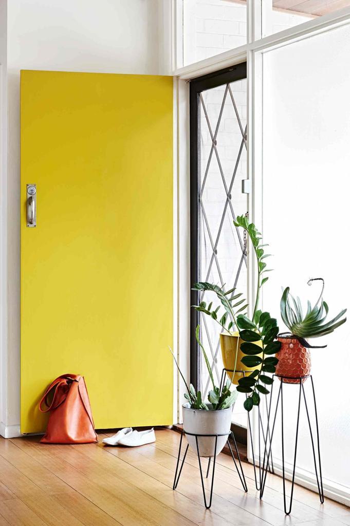 Дверь в дом и цветы у входа.