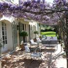 Хорошей идеей будет посадить цветущие растения, чтоб они создавали тень и украшали террасу.