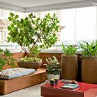 Остекленная лоджия оформленная в средиземноморском стиле. (на открытом воздухе,патио,балкон,терраса,средиземноморский,архитектура,дизайн,экстерьер,мебель)