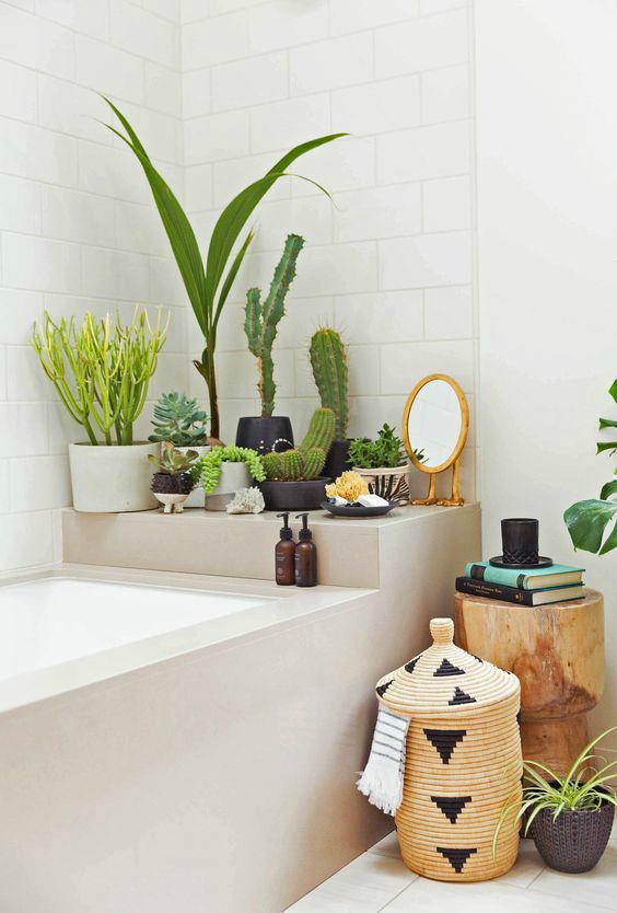 Ничто не делает ванну такой обжитой, как зеленые растения, но им нужен свет