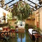 Оранжерея с крышей из стекла и металла примыкает к кухне. Зимой тут хранят лимонные деревья, так как зимой для них холодно. Летом тут хранят коллекцию японских кленов - на улице для них стишком жарко.