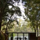 Дом с остекленными фасадами в лесу.