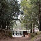 Старая дорога ведет к дому и озеру. (минимализм,архитектура,дизайн,экстерьер,интерьер,дизайн интерьера,мебель,на открытом воздухе,патио,балкон,терраса,фасад)