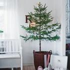 Эта замечательная елочка в корзинке украшена лишь свечками, и этого вполне достаточно. (новый год,рождество,елка,подарки,декор,елочные игрушки,хвоя,гирлянды,конфети,сделай сам,самоделки,интерьер,дизайн интерьера,минимализм,скандинавский)