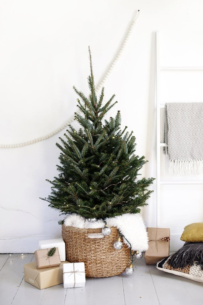 Небольшая елка украшенная только светящейся елочной гирляндой в корзинке. Такая елка выглядит одновременно традиционно и стильно