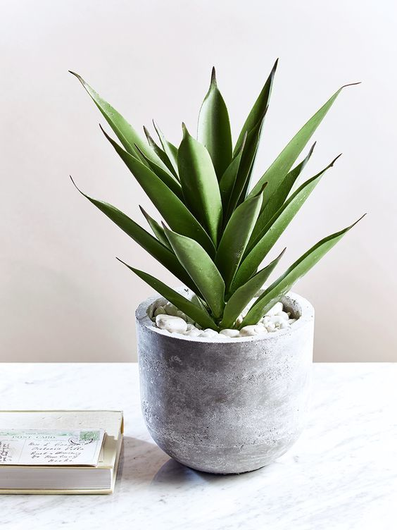 Абсолютно простой и элегантный круглый цветочный горшок из бетона