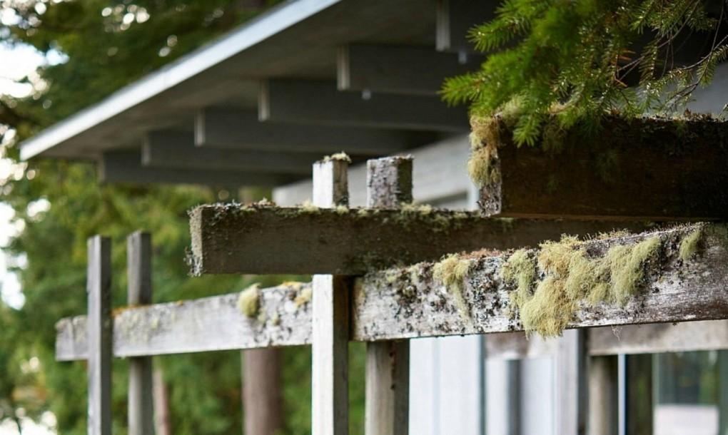 Мох на балках подчеркивает интеграцию дома в окружающую природу.