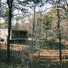 Компактный дом в лесу позволяет профессору уединиться и погрузиться в работу наслаждаясь природой. (маленький дом,интерьер,дизайн интерьера,мебель,архитектура,дизайн,экстерьер,современный,фасад)
