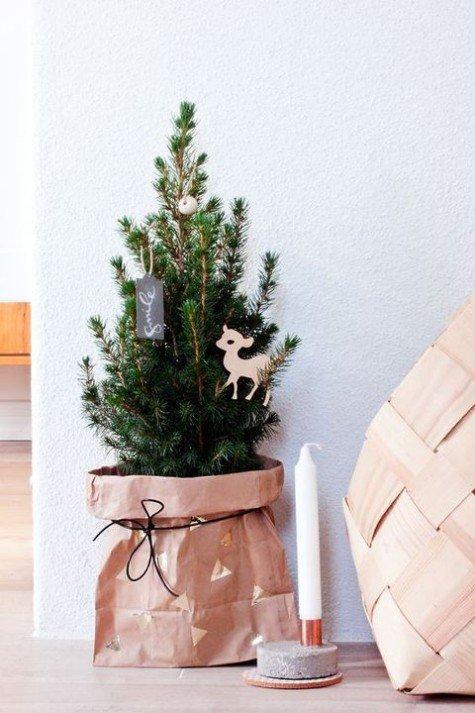 Крошечная елка в бумажном пакете.