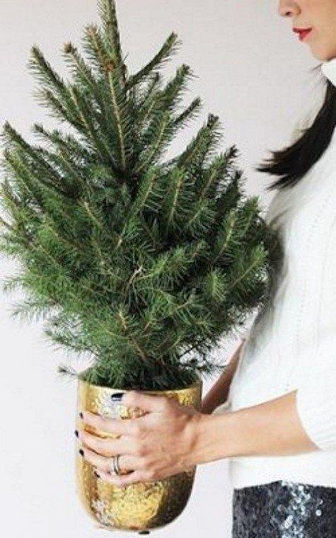 Минималистская елочка в праздничном золотистом горшке.
