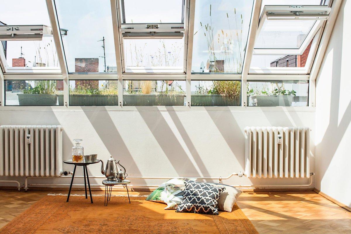 Студия оранжерея очень светлая с остекленной крышей с тремя открывающимися окнами.