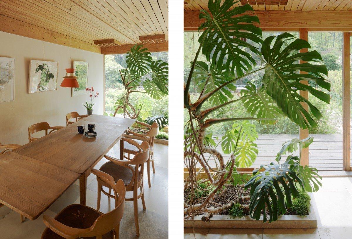 Столовая с небольшим зимним садом с южной стороны дома.