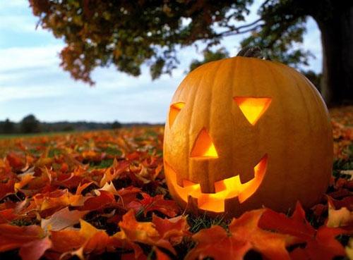 Осень - пора тыкв выйти на улицу.